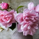 Donáška kvetov rýchlo aspoľahlivo