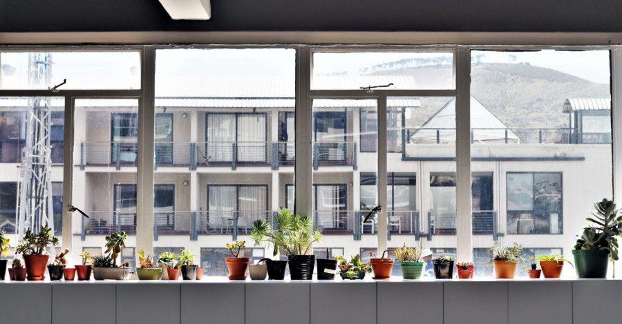 Umývať alebo neumývať okná v zime?
