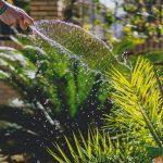Výber hadice do záhrady – ako rozlíšiť kvalitnú a nekvalitnú hadicu?